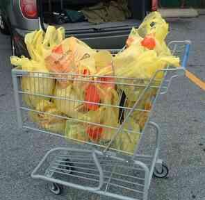 Comment faire pour Démarrer une Épicerie en Ligne de la Livraison de