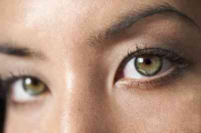 Quelles Sont Les Pupilles?