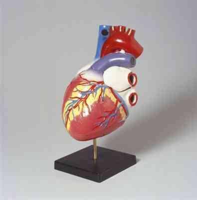Comment Inverser un Cœur d