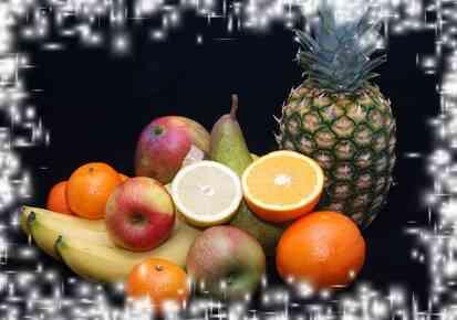 Durabrand Déshydrateur Alimentaire Instructions