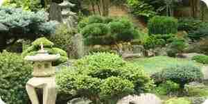 Pousser de la mousse de jardin: aménagement paysager des idées