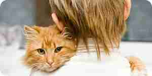 Herpés: causes, symptômes, traitement et prévention