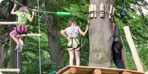 Loisirs arbre à grimper